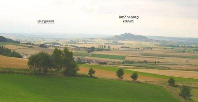 Die 365m hohe Amöneburg vom Vorderen Vogelsberg aus - Bildausschnitt aus Wikipedia