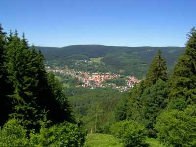 Blick von einer Schlucht nah dem Großen Erleshügel (Süden) auf das Goldlautertal und den 983m hohen Großen Beerberg - Bild aus Wikipedia