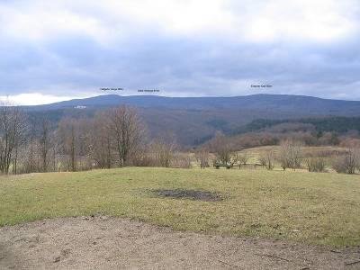 Das Rheingaugebirge von Osten - Bild von Milseburg (Wikipedia.de)