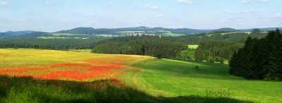"""Der Simmersberg (781m, Mitte links) mit seinen Nebengipfeln Hohe Warth (718m, halblinks) und Kohlberg (730m, Mitte rechts) von der """"Dogge"""" zwischen Hildburghausen und Wiedersbach (Südwesten) aus; halbrechts der nicht zum Massiv gehörige Priemäusel.  - Bild aus Wikipedia"""